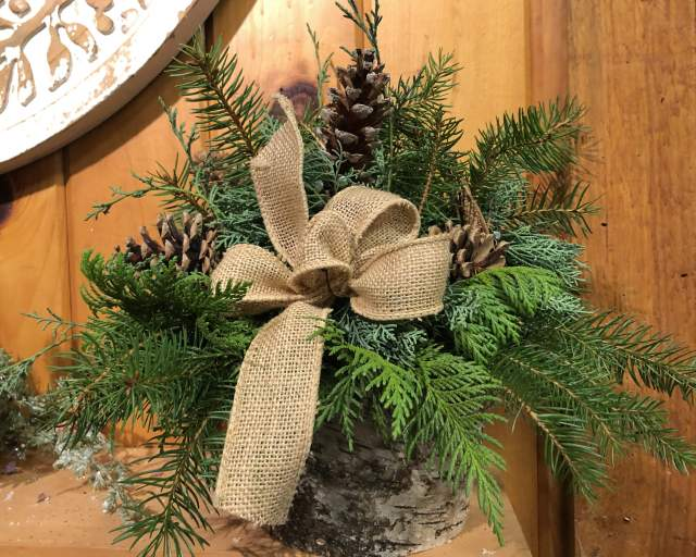 Small Evergreen Centerpiece I